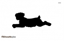 Affenpinscher Dog Breed Silhouette