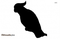 Parrot Silhouette Black And White