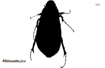Cockroach Logo Silhouette For Download