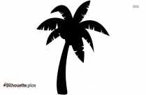 Coconut Tree Drawing Silhouette Background