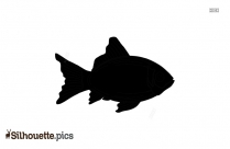 Laughing Fish Silhouett