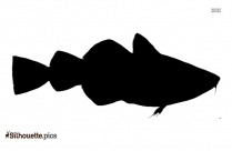 Black And White Monkfish Silhouette