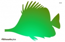Color Fish Drawing Silhouette Art