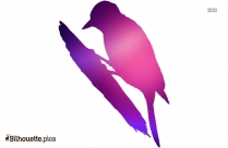 Colorful Bird On Branch Silhouette Image