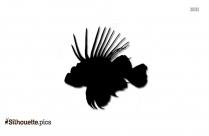 Clown Fish Clip Art Vector Image