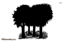 Trippy Tree Drawing Silhouette Art