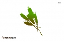 Cowra Seed Silhouette