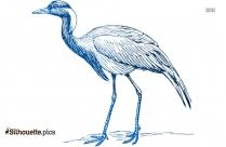 Crane Bird Drawings Silhouette Clipart