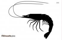 Cartoon Shrimp Clipart Silhouette