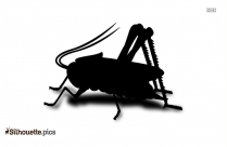 Cricket Insect Silhouette Art