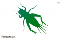 Cricket Insect Silhouette Drawing