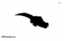 Alligators Silhouette Image