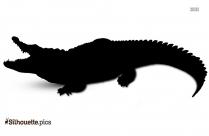 Crocodile Silhouette Vector And Graphics