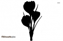 Hydrangea Tattoo Silhouette For Download