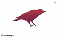 Crow Walking Icon Silhouette Clip Art