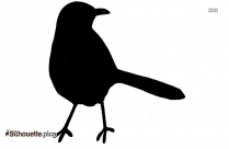 Crow Black And White Silhouette