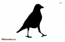 Crow Drawing Silhouette Clip Art