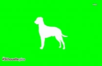 Curly Coated Retriever Silhouette, Dog Breed Vector