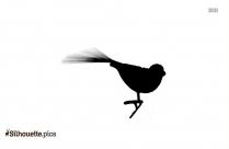 Pigeon Bird Silhouette Vector