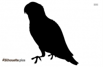 Parrot Bird Silhouette Image And Vector