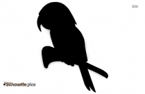 Cartoon Macaw Parrot Silhouette