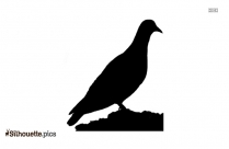 Flying Birds Silhouette Clipart