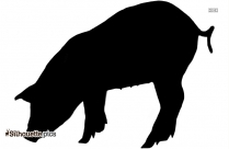 Cute Pigs Silhouette Vector And Graphics