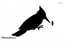 Mallard Duck Flying Silhouette Background