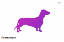 Bernese Mountain Dog Clipart Silhouette