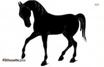 Bucking Horse Silhouette Image