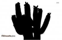 Desert Plant Cactus Silhouette