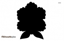 Dahlia Silhouette Background