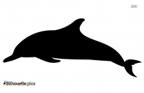 Dolphin Clip Art Free Silhouette Images Download