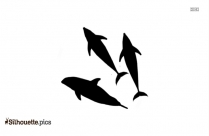 Dolphin Cove Silhouette