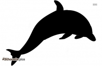 Dolphin Free Vector Images Silhouette