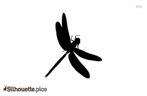 Dragonfly Drawing Cartoon Silhouette