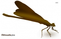 Beetle Silhouette Clipart