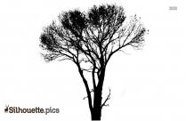African Safari Tree Silhouette