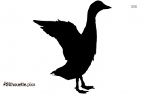 Duck Swimming Silhouette Clipart