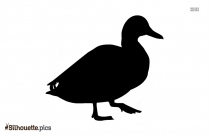 Ducklings Silhouette Illustration Picture