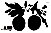 Durian Fruit Clipart Silhouette
