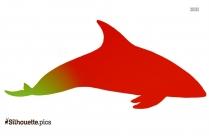 Dusky Dolphin Clip Art Vector Image