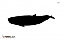 Dwarf Sperm Whale Silhouette