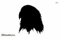 Albatross Bird Art Silhouette