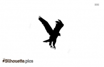 Eagle Head Silhouette