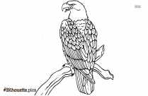 Eagle Line Drawing Silhouette