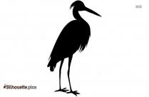 Bird Drawing Silhouette Free Vector Art