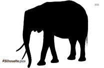Elephant PNG Silhouette
