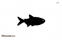 Barracuda Fish Drawing Silhouette