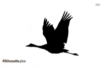 Flying Pigeon Silhouette Drawing